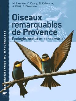 oiseau_provence.jpg