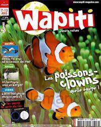 Wapiti n°304
