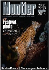 18 ème Festival de Montier-en-der