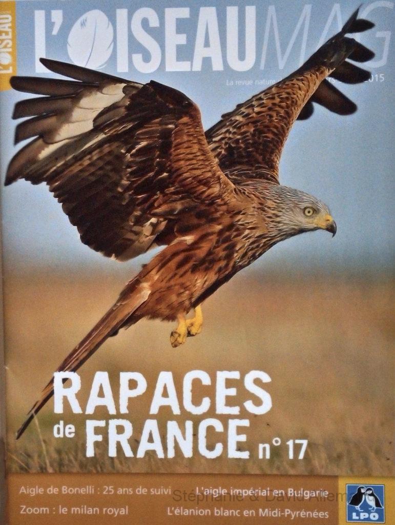Rapaces de France n°17