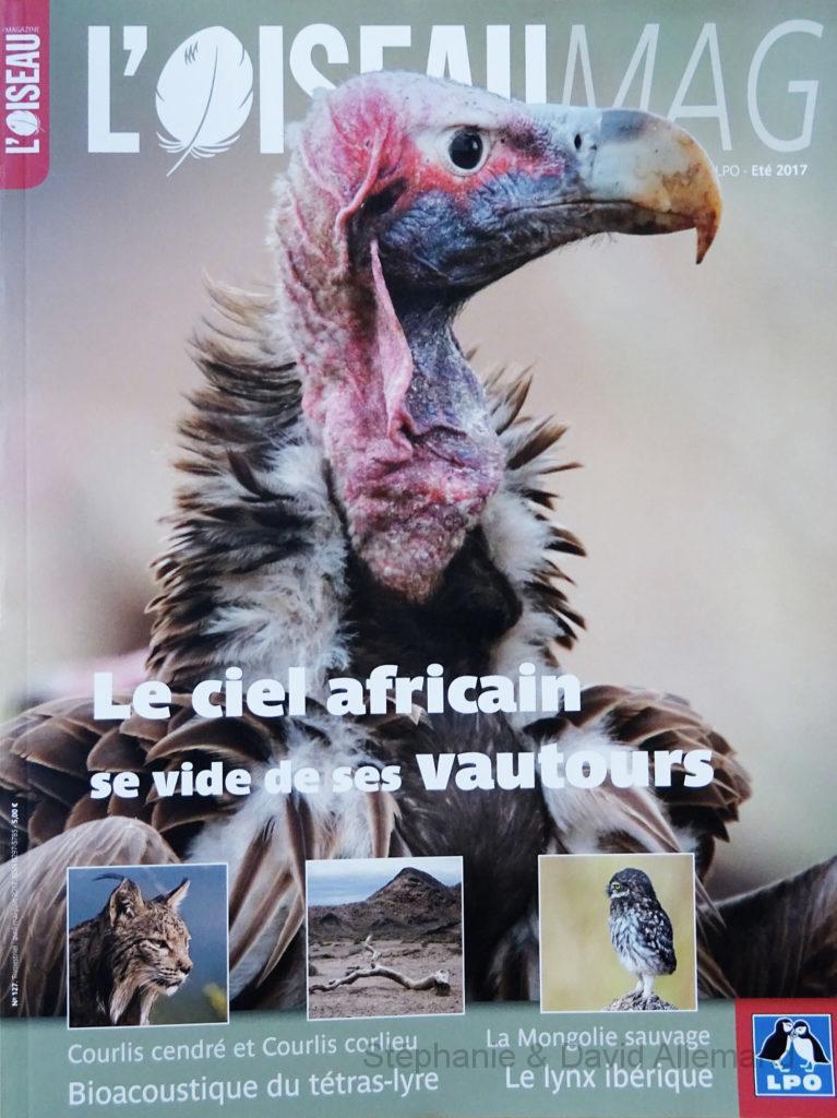 Oiseaumag n°127