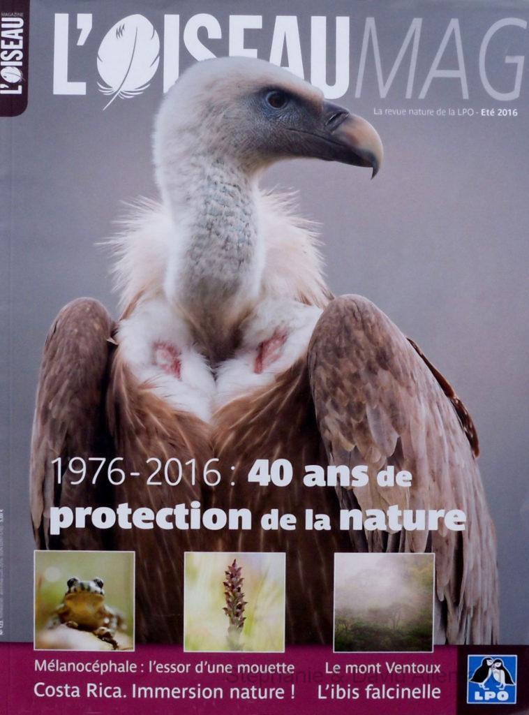 Oiseaumag n°123