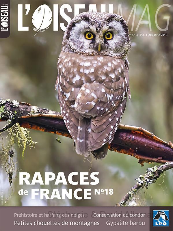 Rapaces de France n°18