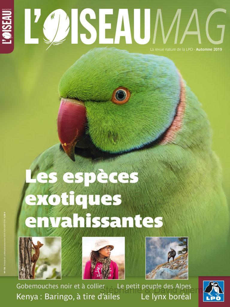 Oiseaumag n°136