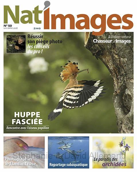 Nat'Images n°50