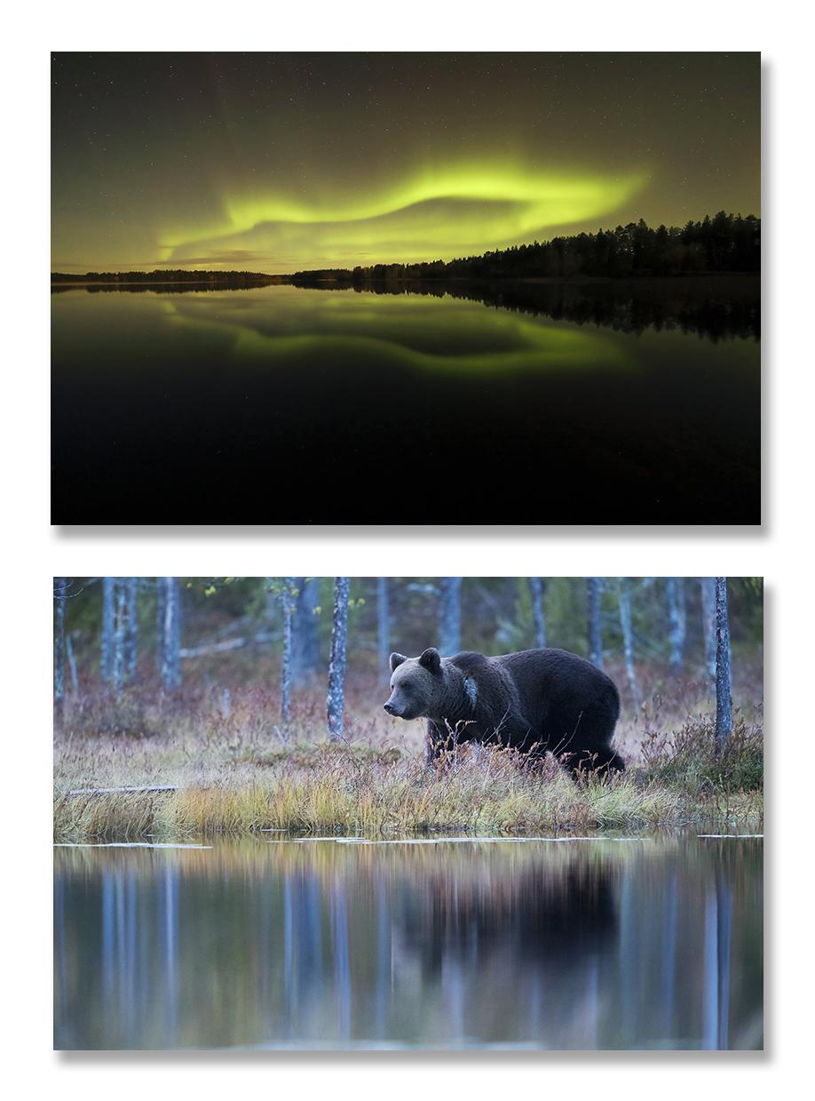 Finlande, tons d'automne