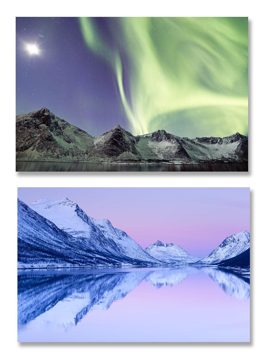 Norvège, hiver boréal et baleines