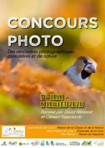 Rencontres photographiques animalières et de nature à Saint-Martin-de-Crau